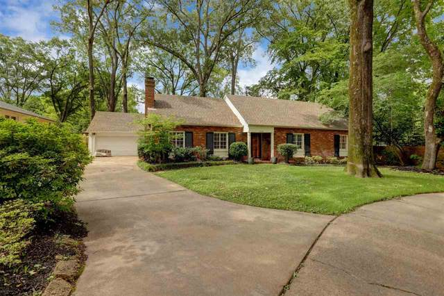 4338 Chickasaw Cv, Memphis, TN 38117 (#10101469) :: J Hunter Realty