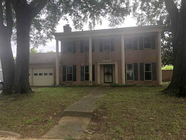 138 Colegrove St, Memphis, TN 38120 (#10101571) :: RE/MAX Real Estate Experts