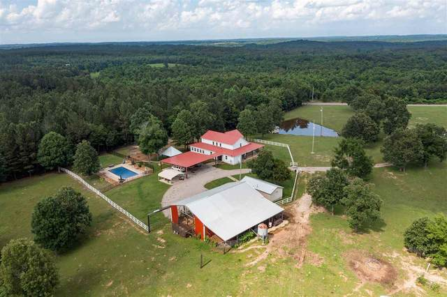 1068 Beauty Hill Rd, Bethel Springs, TN 38315 (#10101655) :: The Wallace Group - RE/MAX On Point