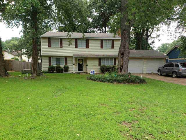 6670 Red Birch Dr, Memphis, TN 38115 (#10101663) :: The Wallace Group - RE/MAX On Point