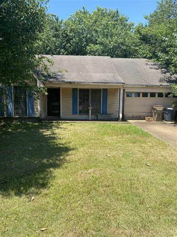 4359 Winding Hollow St, Memphis, TN 38125 (#10101862) :: The Wallace Group at Keller Williams