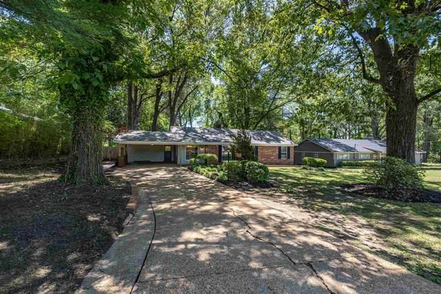 1391 Old Hickory Rd, Memphis, TN 38116 (#10101879) :: J Hunter Realty