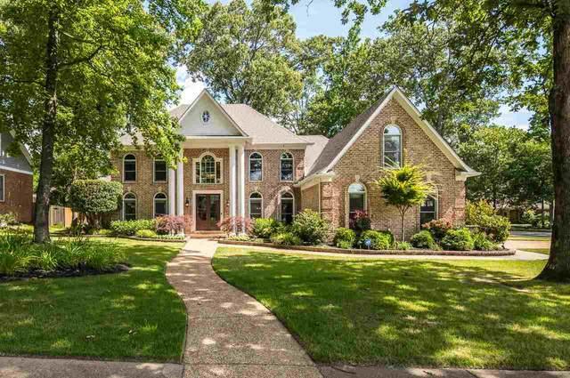 916 Oak Arrow Cv, Collierville, TN 38017 (#10101886) :: J Hunter Realty