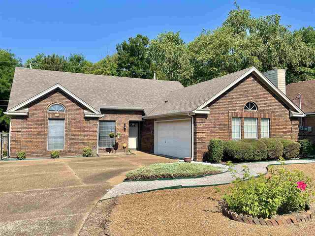 2735 Sage Meadow Dr, Memphis, TN 38133 (#10102068) :: All Stars Realty