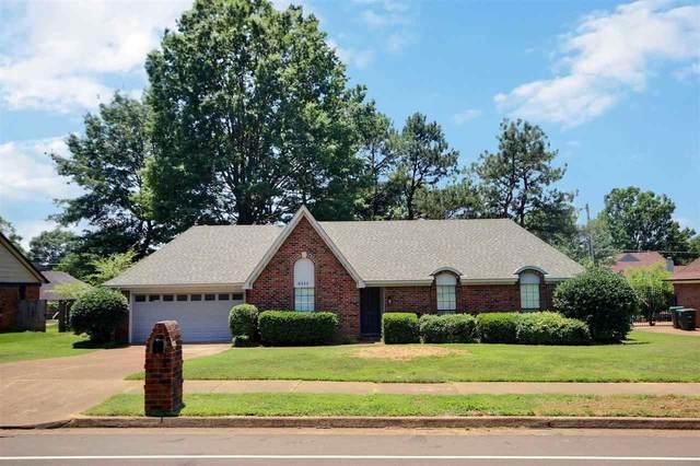 8331 Chimneyrock Blvd, Memphis, TN 38016 (#10102073) :: J Hunter Realty