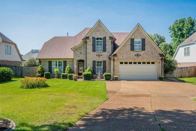10181 Old Brownsville Rd, Lakeland, TN 38002 (#10102094) :: J Hunter Realty