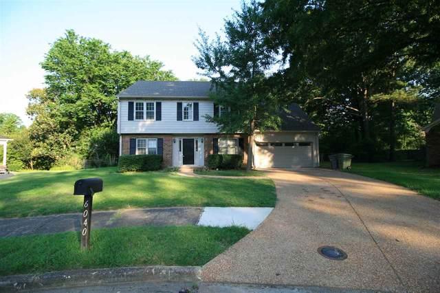 6040 Syon Cv, Memphis, TN 38119 (MLS #10102103) :: Gowen Property Group   Keller Williams Realty