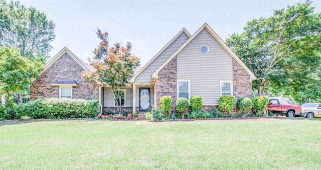 243 Skyline Trl, Collierville, TN 38017 (#10102118) :: The Wallace Group at Keller Williams
