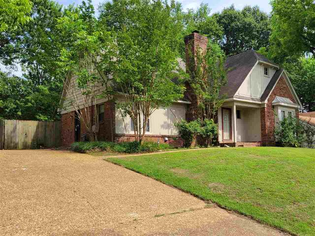 1000 Pheasant Hollow Dr, Memphis, TN 38018 (#10102127) :: The Wallace Group - RE/MAX On Point