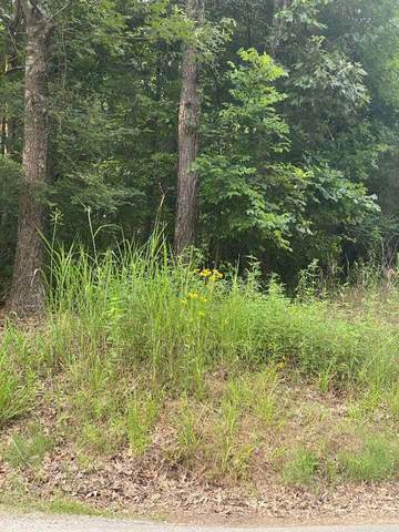 0 Lakeview Dr, Unincorporated, TN 38017 (#10102211) :: RE/MAX Real Estate Experts