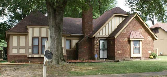 4135 Friendship Ln, Memphis, TN 38115 (#10102479) :: J Hunter Realty