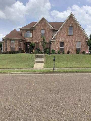 1144 Halls Hill Ln, Cordova, TN 38018 (#10102726) :: The Wallace Group - RE/MAX On Point