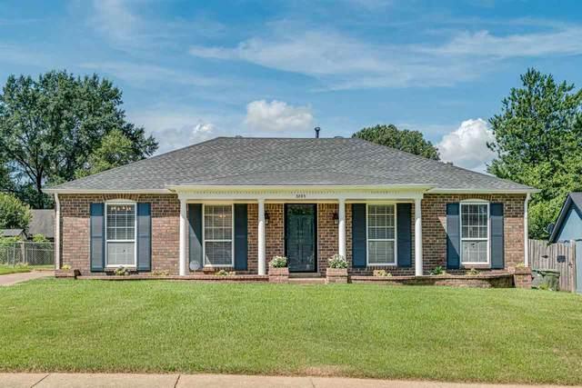 3985 Wildwind Cv, Memphis, TN 38115 (#10103012) :: J Hunter Realty