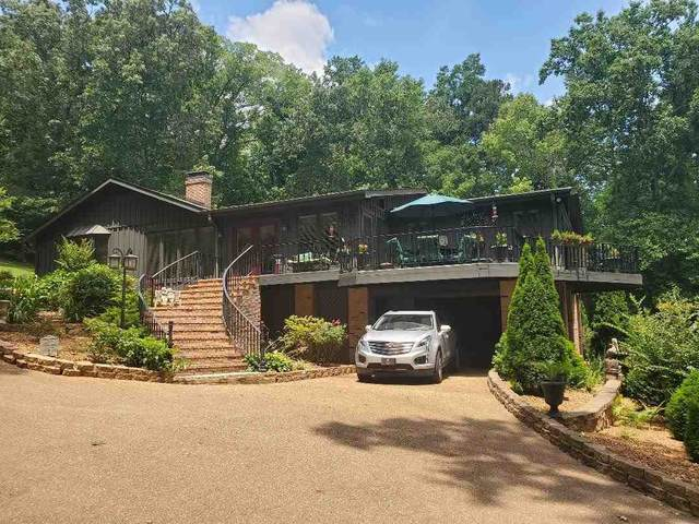 650 Caney Hollow Rd, Counce, TN 38326 (#10103115) :: J Hunter Realty