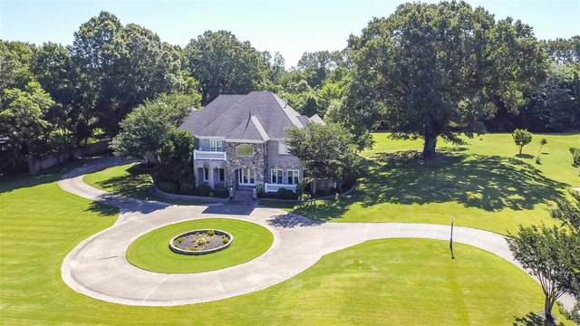 300 Monterey Mills Rd, Collierville, TN 38017 (MLS #10103221) :: Your New Home Key