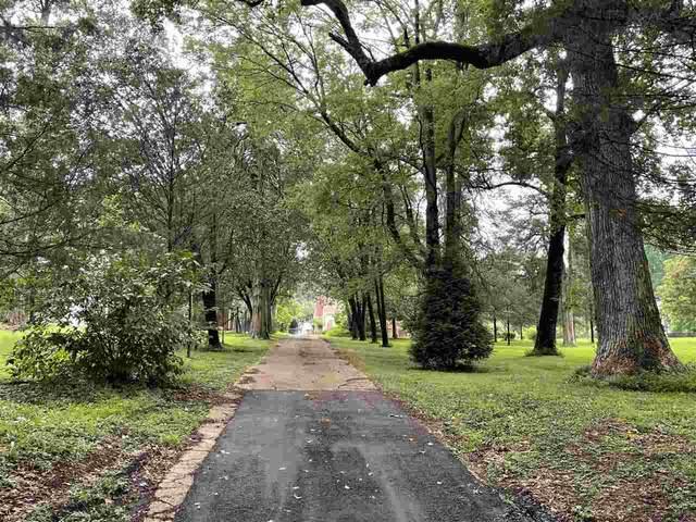 3149 Scheibler Rd, Memphis, TN 38128 (#10103245) :: The Home Gurus, Keller Williams Realty