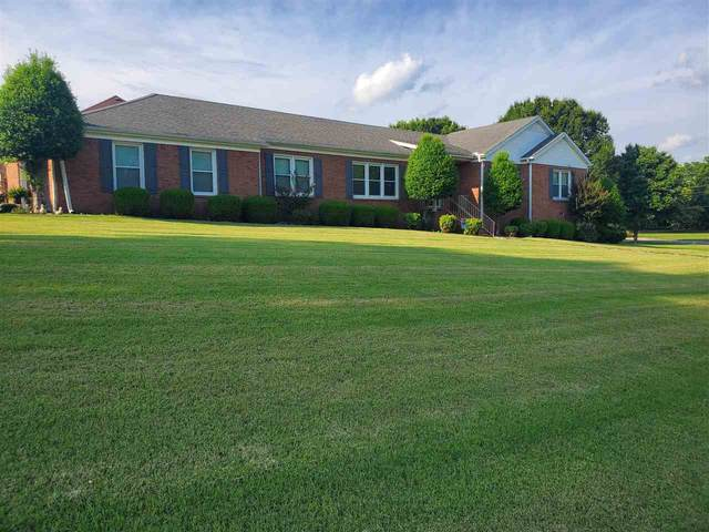 115 Willow Creek Dr, Ripley, TN 38063 (#10103620) :: The Wallace Group - RE/MAX On Point