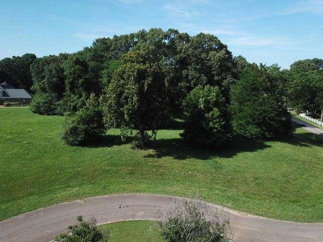 Bonne Terre Cir, Hickory Withe, TN 38028 (MLS #10103668) :: Gowen Property Group | Keller Williams Realty