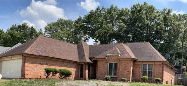 6979 Ridgetop Place Cv, Memphis, TN 38141 (#10103698) :: J Hunter Realty