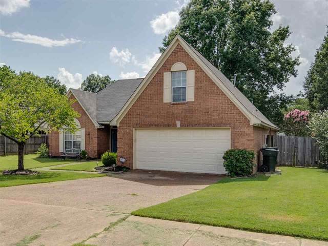 3745 Charles Brown Cv, Bartlett, TN 38133 (#10104144) :: The Wallace Group - RE/MAX On Point