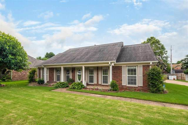 8305 Chimneyrock Blvd, Memphis, TN 38016 (MLS #10104434) :: Gowen Property Group | Keller Williams Realty