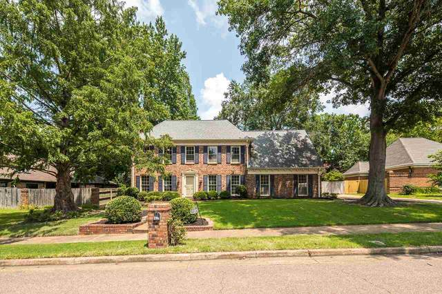 8214 Waverly Crossing Rd, Germantown, TN 38138 (#10104667) :: All Stars Realty