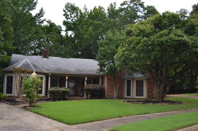 2995 Leyland Cv, Memphis, TN 38119 (#10104821) :: RE/MAX Real Estate Experts