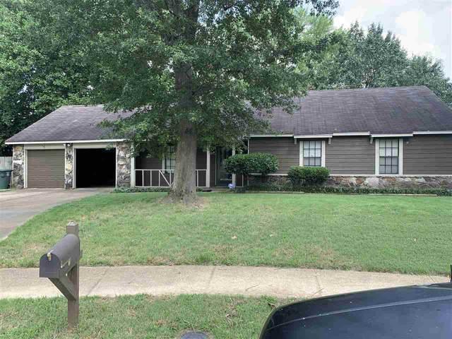 4228 Moonfall Ln N, Memphis, TN 38141 (#10104872) :: J Hunter Realty