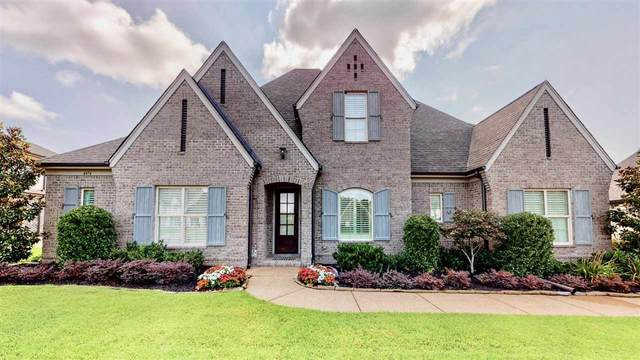 4474 Chestnut Hill Dr, Collierville, TN 38017 (#10104901) :: The Home Gurus, Keller Williams Realty