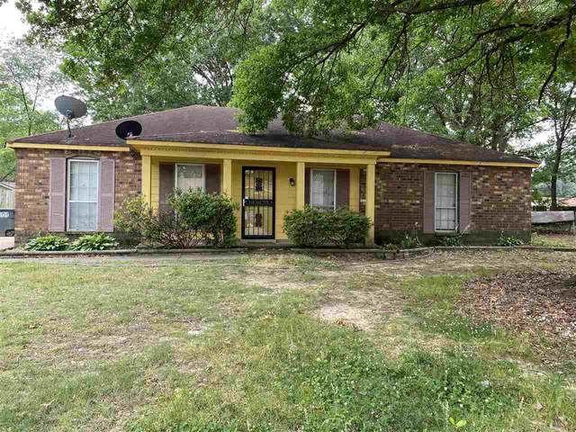 6175 Trout Valley Cv, Memphis, TN 38141 (#10104962) :: The Wallace Group - RE/MAX On Point
