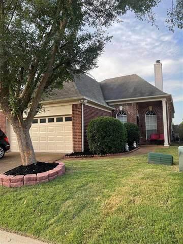 8659 Eagle View Dr, Cordova, TN 38018 (#10104986) :: RE/MAX Real Estate Experts