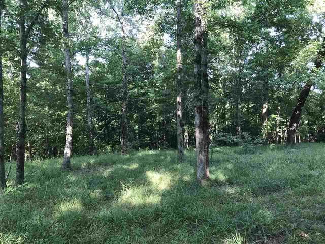 0 Lake Trail Loop, Selmer, TN 38375 (#10104987) :: RE/MAX Real Estate Experts