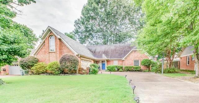 679 Cedar Brake Dr, Memphis, TN 38018 (#10105006) :: J Hunter Realty