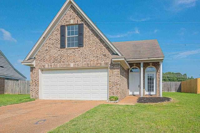 2523 Boxford Ln, Memphis, TN 38016 (#10105010) :: All Stars Realty