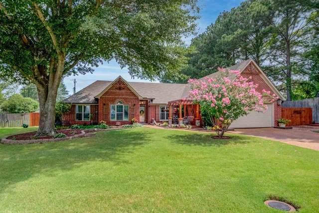 8480 Springer Cir N, Memphis, TN 38018 (#10105095) :: RE/MAX Real Estate Experts