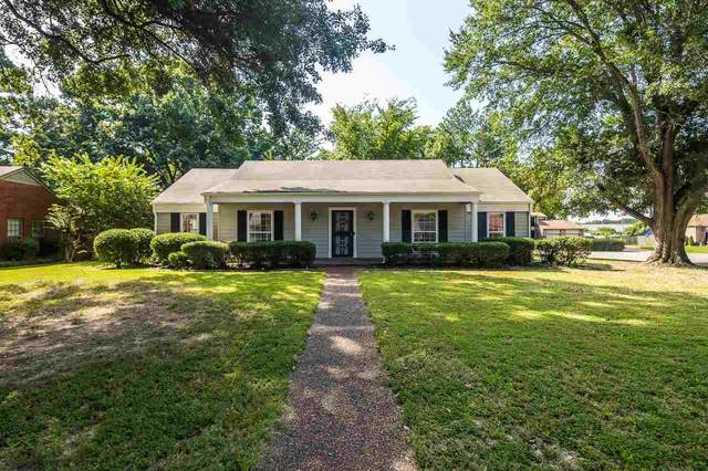 6439 Sulgrave Dr, Memphis, TN 38119 (#10105112) :: The Wallace Group - RE/MAX On Point