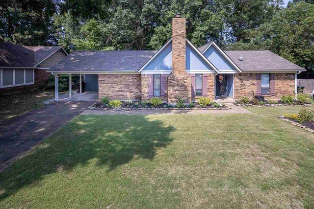 4165 Luther Rd, Bartlett, TN 38135 (#10105254) :: Area C. Mays | KAIZEN Realty