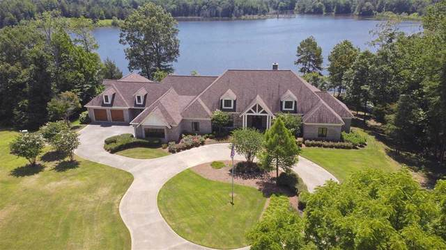 1020 County Road 343 Rd, Myrtle, MS 38650 (#10105378) :: The Wallace Group - RE/MAX On Point