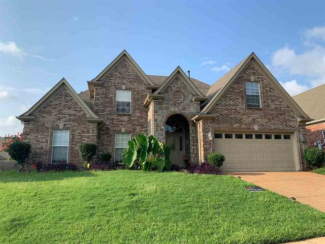9596 Morning Shadow Dr, Memphis, TN 38016 (#10105453) :: The Wallace Group - RE/MAX On Point