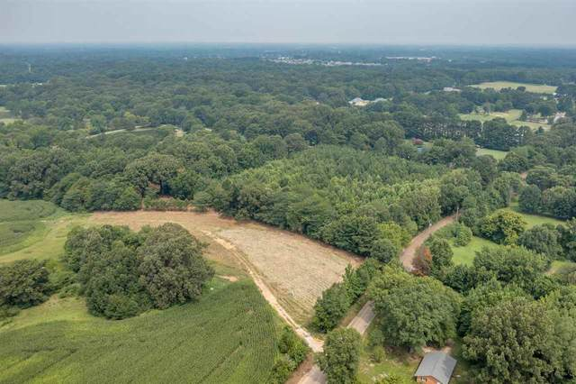 1807 Quinn Rd, Collierville, TN 38017 (#10105485) :: RE/MAX Real Estate Experts