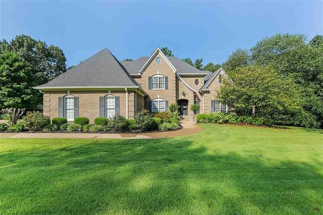 55 Shawnee Cv, Savannah, TN 38372 (MLS #10105880) :: Area C. Mays | KAIZEN Realty