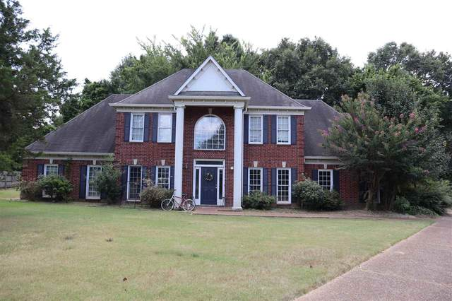 739 Catesby Cv, Collierville, TN 38017 (#10106058) :: The Wallace Group at Keller Williams