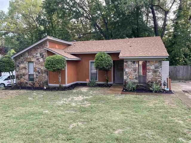 3807 Rainford Dr, Memphis, TN 38128 (#10106110) :: Faye Jones | eXp Realty