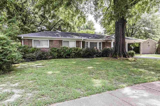 5182 Whitecliff Dr, Memphis, TN 38117 (#10106503) :: RE/MAX Real Estate Experts