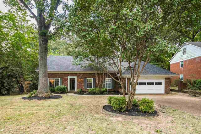 6230 Quince Rd, Memphis, TN 38119 (#10106627) :: All Stars Realty
