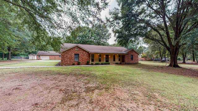 353 W Sweetwater Rd, Byhalia, MS 38611 (MLS #10106945) :: Your New Home Key