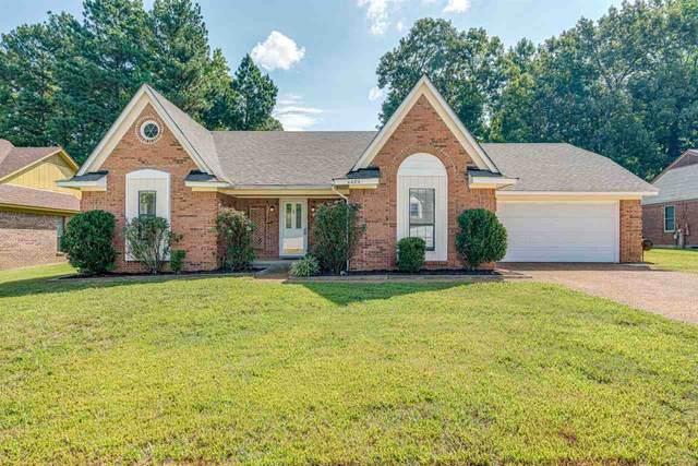 4464 Window Dr, Memphis, TN 38135 (#10107268) :: Bryan Realty Group
