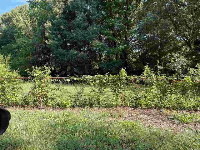 1270 Longcrest Rd, Memphis, TN 38109 (#10107316) :: The Home Gurus, Keller Williams Realty