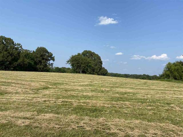 2535 Tomlin Rd, Unincorporated, TN 38068 (MLS #10107376) :: Your New Home Key