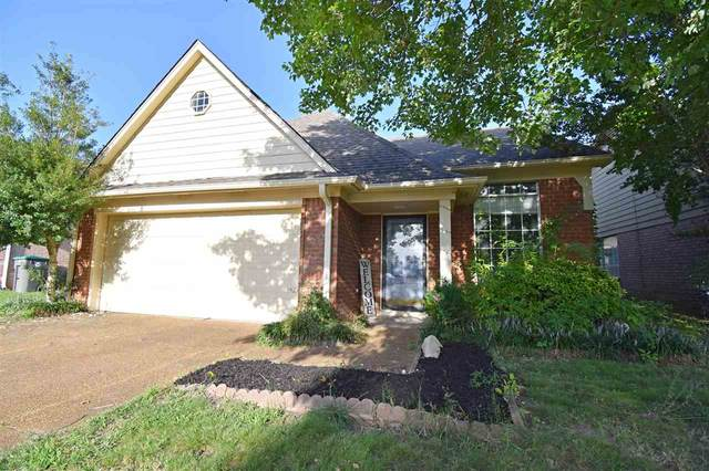 2268 Lake Hill Ct, Memphis, TN 38016 (#10107517) :: J Hunter Realty